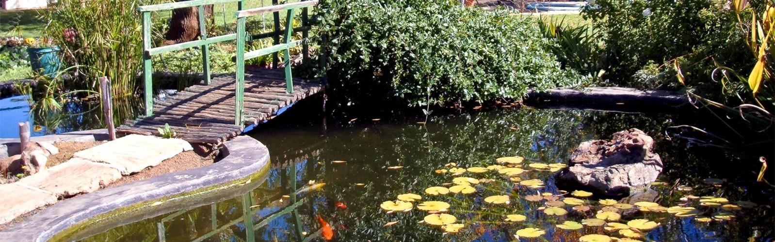 springfontein-accomodation-10
